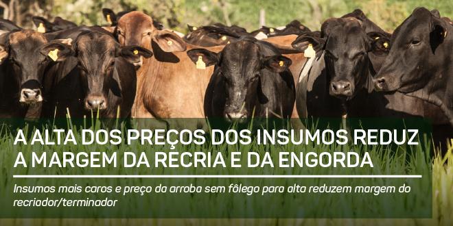 https://www.scotconsultoria.com.br/bancoImagensUP/161226-Carta-Insumos-1.png