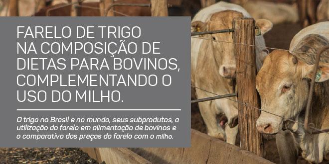 https://www.scotconsultoria.com.br/bancoImagensUP/180328-carta-insumos-1.jpg