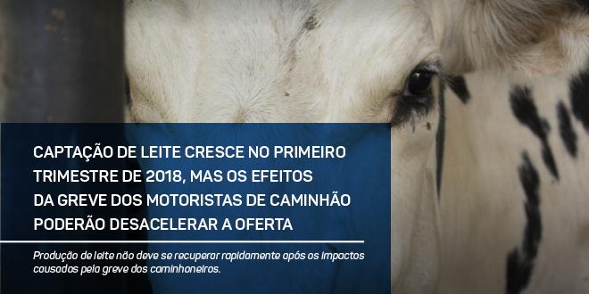 http://scotconsultoria.com.br/bancoImagensUP/180618_carta_leite_1.jpg