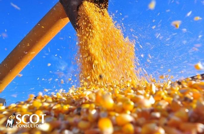 http://www.scotconsultoria.com.br/bancoImagensUP/180817-news-noticias-5.jpg