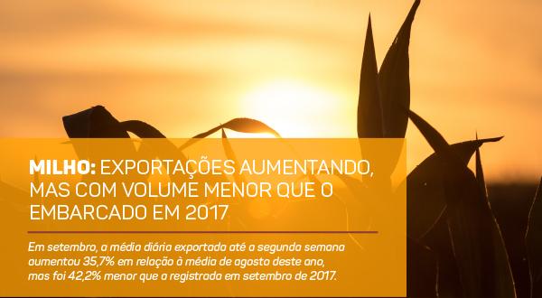 http://www.scotconsultoria.com.br/bancoImagensUP/180925_Imagem_Carta_Graos_nm.jpg