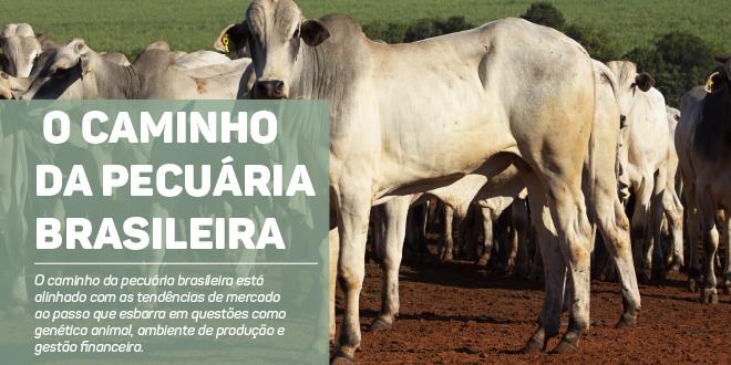 http://www.scotconsultoria.com.br/bancoImagensUP/181003-carta-1.jpg