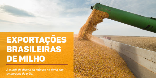 http://scotconsultoria.com.br/bancoImagensUP/181031_carta_graos_1.jpg