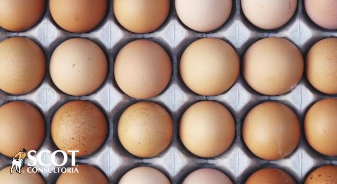 Demanda firme dá sustentação aos preços dos ovos