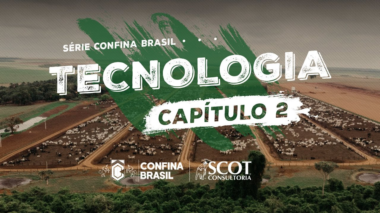 Benchmarking Confina Brasil