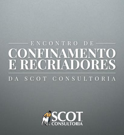 Encontro de Confinamento e de Recriadores da Scot Consultoria
