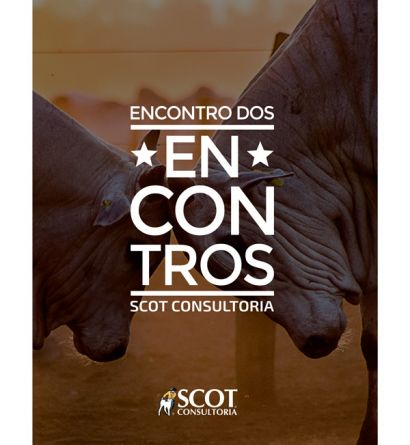 https://www.scotconsultoria.com.br/libs/mini.php?file=imgUP/foto1_1444225973.jpg