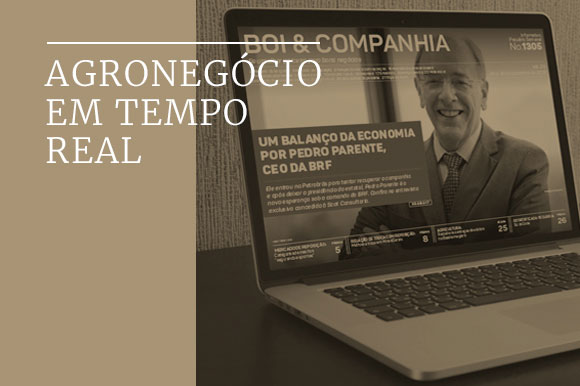 folder-boi-e-companhia